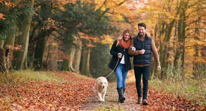 Cohabiting is not always a walk in the park